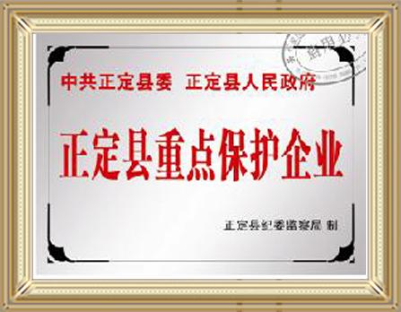 正定县重点保护企业