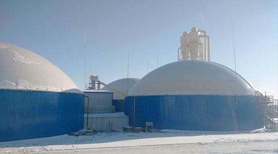 生物质天然气工程案例